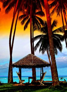Palm trees and tiki huts...