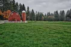 Green, wide open spaces