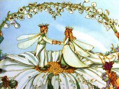 Illustration by Sylvia Long