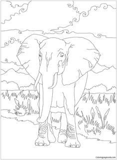 African Bush Elephant Coloring Page