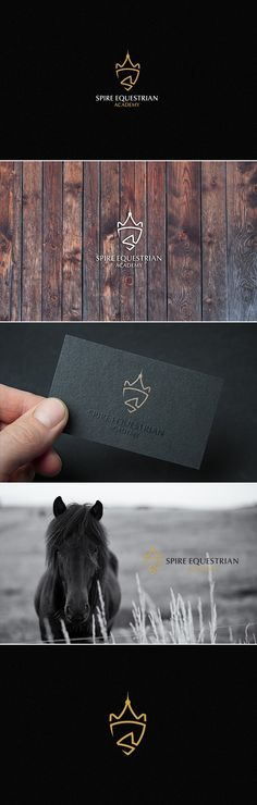 Logo design for Spire Equestrian Academy displays the horse imagery in a non-cliche.