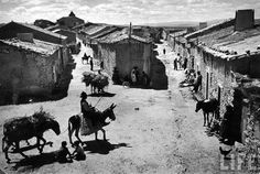 """Province of Caceres. Villagers return from the fields with hay and firewood. From """"Spanish Village"""" photo-essay. Eugene Smith, Village Photos, Photographer Portfolio, Great Photographers, Magnum Photos, Photo Essay, Beach Landscape, Life Magazine, Old Photos"""