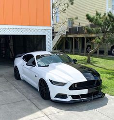 Ford Ford Mustang Gt, Mustang Cobra Jet, Mustang Cars, Exotic Sports Cars, Cool Sports Cars, Sport Cars, Custom Muscle Cars, Custom Cars, Lux Cars