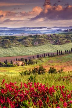 Tuscany in spring Val D'orcia Siena