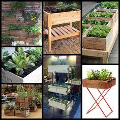 Com caixas de madeira você tem uma hortinha orgânica e mais saúde! :)