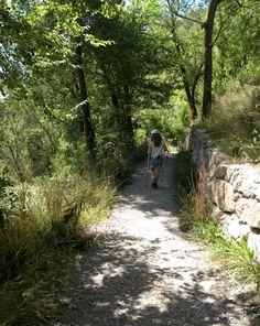 La Via del Nicolau, al Berguedà #sortirambnens