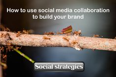 How to use social media collaboration to build your brand