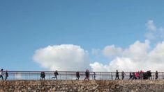 Os centros educativos de toda Galicia poderán visitar a Domus, o Aquarium e a Casa das Ciencias sen custo adicional