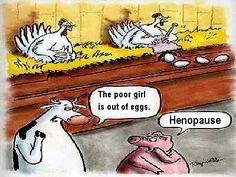 hen humor...