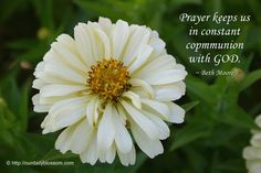 View Full Size x Our life is frittered away by detail . ~ Henry David Thoreau *** Photo Quoto: Sayings, quotes and Beth Moore Quotes, Priscilla Shirer, Walk In The Light, God's Heart, Show Me The Way, Henry David Thoreau, Women Of Faith, Prayer Quotes, Godly Woman