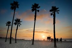 Last night's Venice Beach sunset - funny how the winter sky looks different, even here Vacation Days, Vacation Places, Vacations, Abbot Kinney Venice, Palm Tree Sunset, Palm Trees, Winter Sky, Exotic Places, Road Trip Usa