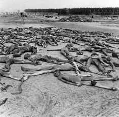 Bergen Belsen, Germany, Corpses of inmates, April 1945. How many of us, today, truly recognize reality?