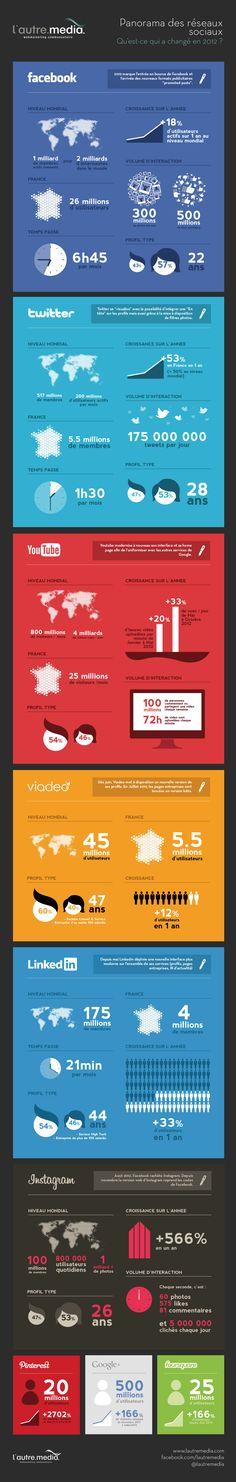 Depuis décembre, les infographies se suivent et se ressemblent. Beaucoup présentent les statistiques liées à l'Internet ou aux réseaux sociaux en 2012. Cel