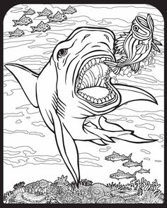 Color the Monstrous Megalodon   Megalodon, Worksheets and Coloring ...