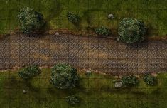 Tileable(endless) King's Road, a printable and online battle map for Dungeons and Dragons / D&D, Pathfinder and other tabletop RPGs. Tags: forest, trees, tile, fantasy, road, encounter, combat, print, roll20, fantasy grounds