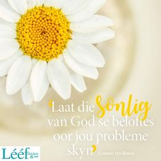 Corrie Ten Boom, Goeie More, Afrikaans Quotes, Hart, Dear God, Words, Pictures, Bob, English