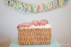 Beautiful newborn photo ideas using items from around your own house! :)