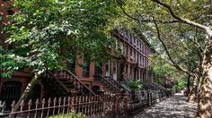 NASA Explains Why You Should Live On A Tree-Lined Street--And A Tree-Lined City   Cities, urban management and ecosystem services   Scoop.it