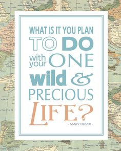 """What is it you plan to do with your one wild and precious life?"" -Mary Oliver (with map background!)"