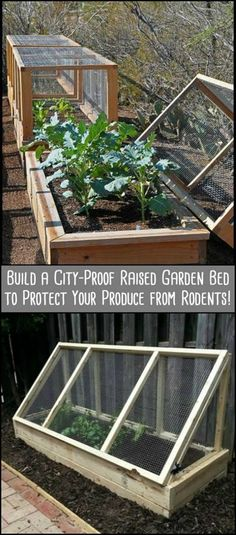 Protect Your Produce from Rodents by Building This City-Proof Raised Garden Bed . - Protect Your Produce from Rodents by Building This City-Proof Raised Garden Bed - Building Raised Garden Beds, Raised Beds, Elevated Garden Beds, Raised Garden Bed Plans, Home Vegetable Garden, Veggie Gardens, Vegetable Boxes, Raised Vegetable Gardens, Cold Frame