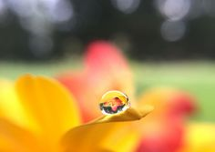Just a drop | by jilllian2