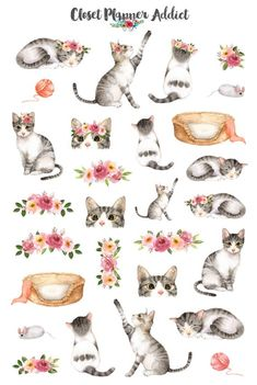 A collection of beautiful watercolour cats planner Watercolor Stickers, Watercolor Cat, Watercolor Animals, Cat Stickers, Printable Stickers, Journal Stickers, Planner Stickers, Silvester Trip, Alfabeto Animal