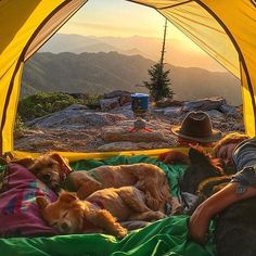 This is a sign that your day was great! @nancythebeat this is close to perfection! #campingwithdogs