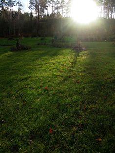 Solbacka sun inbetween the rainsSaturday, November 14th, NB!3:17 pm