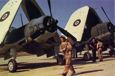British Royal Navy Corsair Mk I fighters at Naval Air Station Quonset Point, Rhode Island, United States, 1943 Source United States Navy Navy Aircraft, Aircraft Photos, Ww2 Aircraft, Aircraft Carrier, Military Aircraft, F4u Corsair, Mk1, Fighter Pilot, Fighter Jets