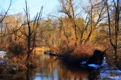 Morristown NJ   Water is the driving force in nature