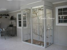 Candace Miller uploaded this image to 'SunRoom Aviary'.  See the album on Photobucket.