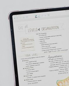 Goodnotes for iPad 'Levels of Organisation' study notes. School Organization Notes, Study Organization, College Notes, School Notes, College Notebook, Pretty Notes, Good Notes, Ipad Mini Wallpaper, School Study Tips