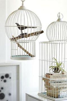 bird cage interior - vogelkooi interieur1
