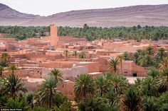 Oasis town Figuig, in Morocco, is under threat due to a social and economic crisis caused by the closing of the Algerian crossing in 1994