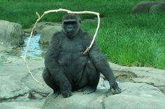 okc zoo memorial day hours
