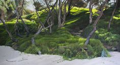 'Secret Path' - Naomi White - Sense of Place at FLG Melbourne
