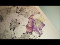 (19) 1. Coloring Tutorial - Paeonia/Pivoňka - YouTube