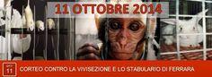 #NOstabularioFerrara Partecipa al corteo contro la vivisezione a #Ferrara sabato 11.10.14  INFO: http://nostabularioferrara.blogspot.it/2014/06/corteo-contro-la-vivisezione-e-lo.html