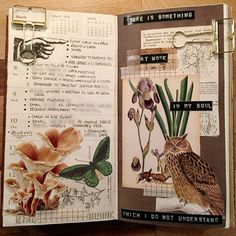 A pointing hand (because who doesn't love the subtlety of a pointing hand), a sassy owl and a reminder to re read Frankenstein Bullet Journal Books, Bullet Journal Ideas Pages, Bullet Journal Inspiration, Art Journal Pages, Journal Notebook, Junk Journal, Art Journaling, Garden Journal, Nature Journal