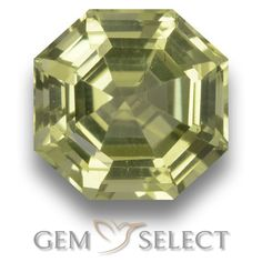 GemSelect features this natural untreated Apatite from Madagascar. This Green Apatite weighs 2.3ct and measures 8.1 x 7.9mm in size. More Asscher Cut Apatite is available on gemselect.com #birthstones #healing #jewelrystone #loosegemstones #buygems #gemstonelover #naturalgemstone #coloredgemstones #gemstones #gem #gems #gemselect #sale #shopping #gemshopping #naturalapatite #apatite #greenapatite #octagongem #octagongems #greengem #green Green Gemstones, Loose Gemstones, Natural Gemstones, Buy Gems, Gem Shop, Asscher Cut, Gemstone Colors, Shades Of Green, Stone Jewelry