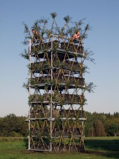 Students in Germany have developed a method of growing trees into form structures. By manipulation knotted willow trees metal rods can be inserted to form structures