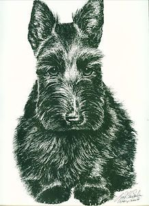 Dog Print Scottish Terrier by Lyn St. Clair Stubbs