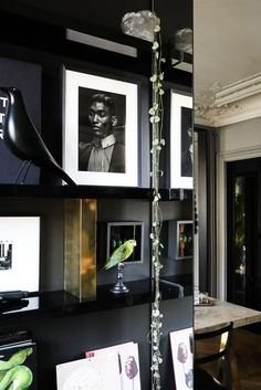 Art Photographies Rangements Eames Bird Appartement Paris David Chaplain et Alexandre Roussard