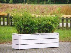 Pflanzkasten / Pflanzkübel aus Holz, Länge: 172 cm, Höhe: 52 cm, Farbe: Transparent Geölt Weiß