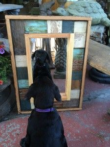 Black Dog Salvage Offers Unique Mother's Day Gift Ideas Black Dawg Salvage, Can Dogs Eat Corn, Thrift Shop Finds, Dog Shots, Unique Mirrors, Unique Mothers Day Gifts, Diy Pallet Projects, Pallet Ideas, Wood Projects