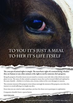 "To you, it's just a meal. To her, it's life itself.. Compassion shouldnt be exclusively for ""cute"" or ""useful"" animals/beings"