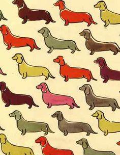 Quiero unas cortinas de perros salchichas <3