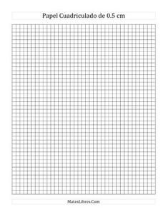 standard graphing paper you may select either 1 10 1 4 3 8 1 2