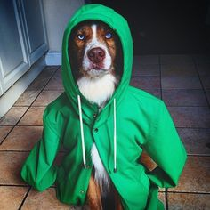 Get 10% off all rain jackets with discount code: INSTA and http://ift.tt/1S00oeE for a limited time only!