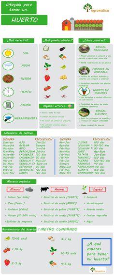 #Infografía sobre cómo montar un huerto - via Agromática................. cc meneame.net